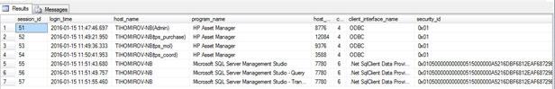 Рисунок 6. Информация о текущих сессиях пользователей HP Asset Manager в базе данных